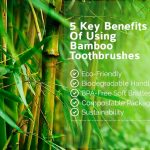 Benefits-of-using-bamboo-toothbrushes