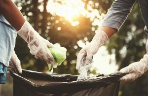 Best Biodegradable Trash Bags