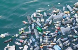 Plastic bottles are polluting the ocean.